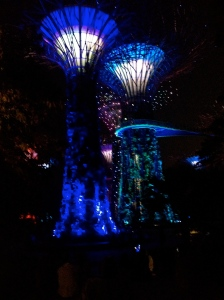 gardens by the bay singapore night show light